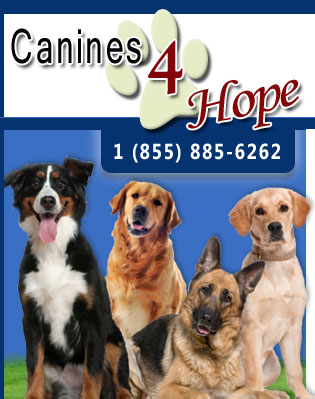 Canines 4 Hope Dog Trainers, Service Dog Trainers