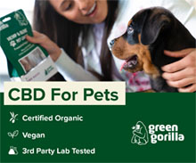 CBD for Pets - Organic CBD Dog Treats and Oils - Green Gorilla