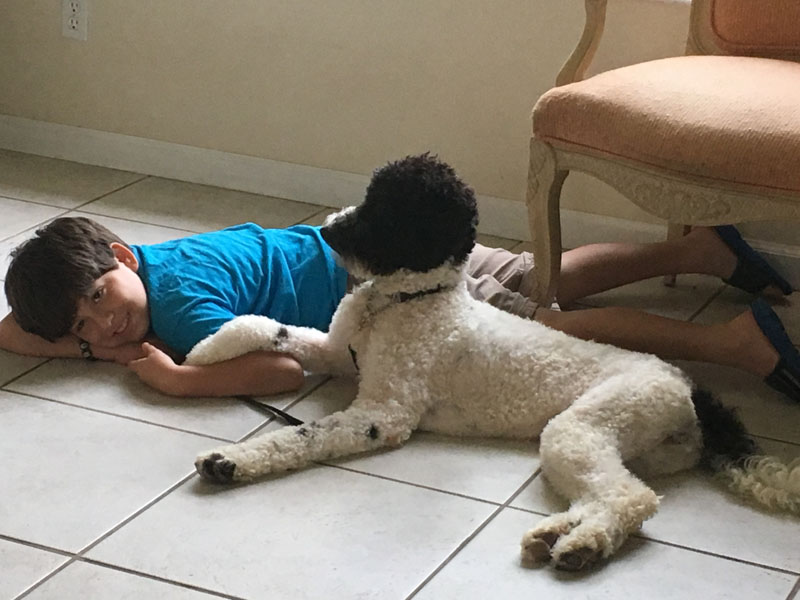 David and Oreo autism dog
