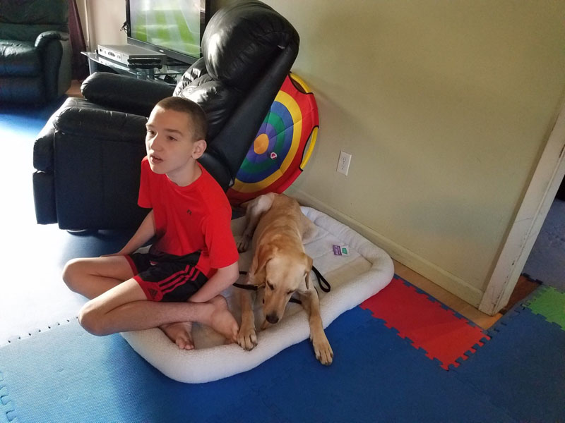 Gordo and Ben's first day. Gordo is an Autism Seizure Service Dog