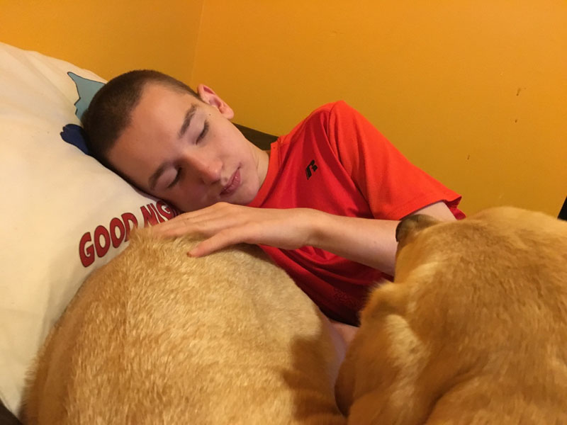 Gordo and Ben's first day. Gordo is an Seizure / Autism Service Dog